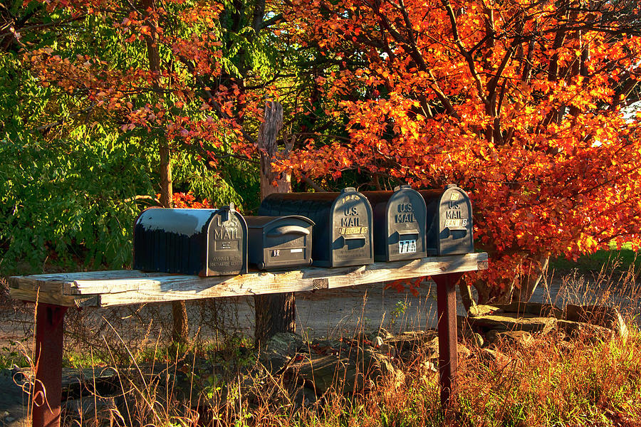 Mail Box Art by Joann Vitali