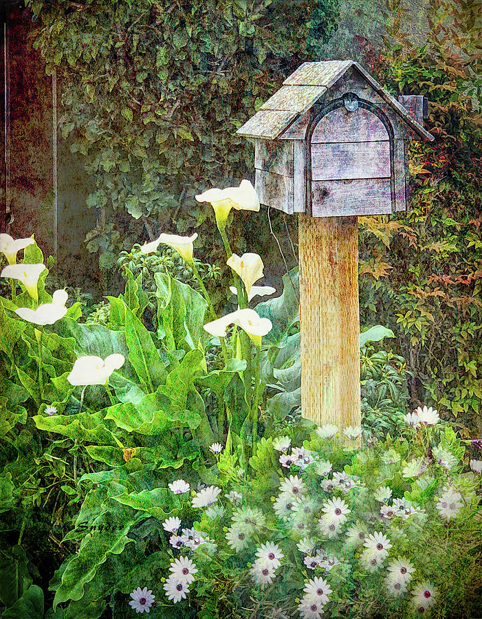 Mailbox in the Daises  by Floyd Snyder