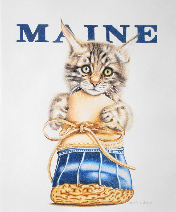 Maine Drawing - Maine Coon Kitten by Karrie J Butler
