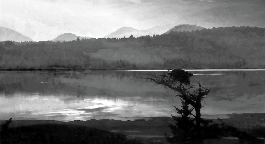 Maine Reflections-black And White Mixed Media