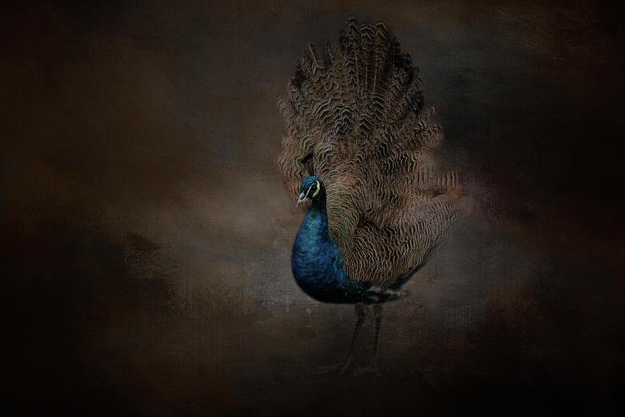 Majestic Blue Beauty  by Kelley Parker