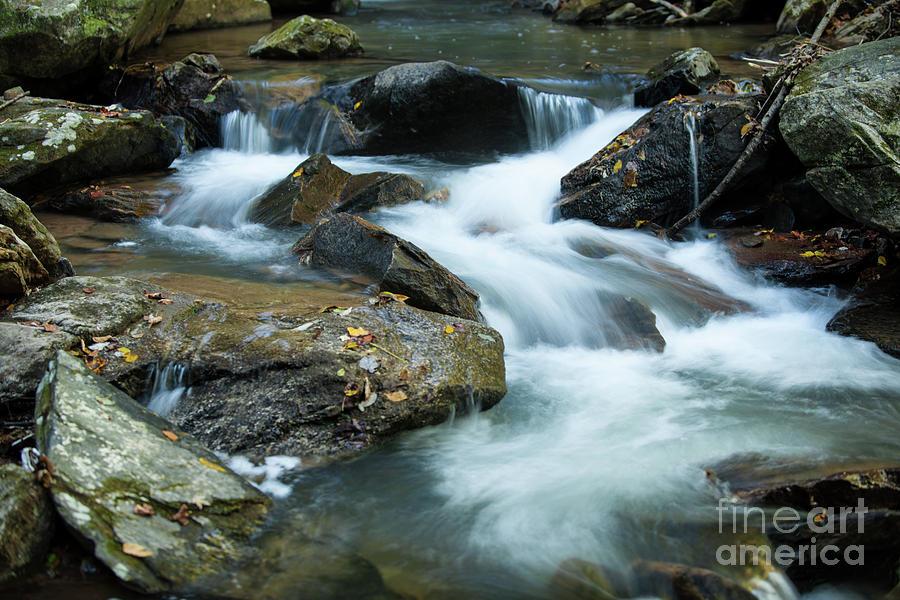 Majestic River Sounds Photograph