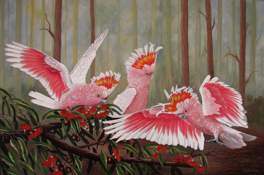 Major Mitchells, Australian parrots by Debra Dickson