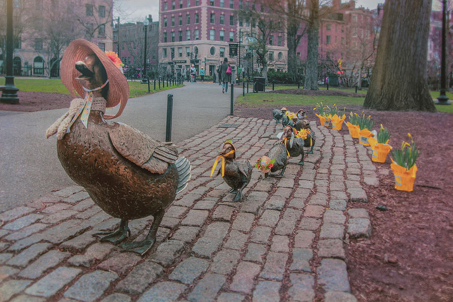 Make Way For Ducklings - Boston Spring  by Joann Vitali