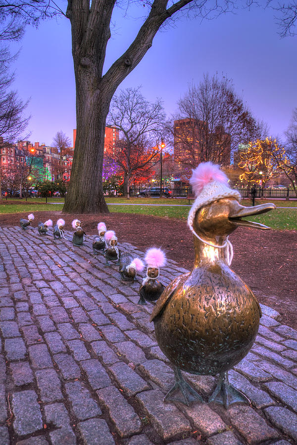 Make Way for Ducklings - Boston Winter by Joann Vitali