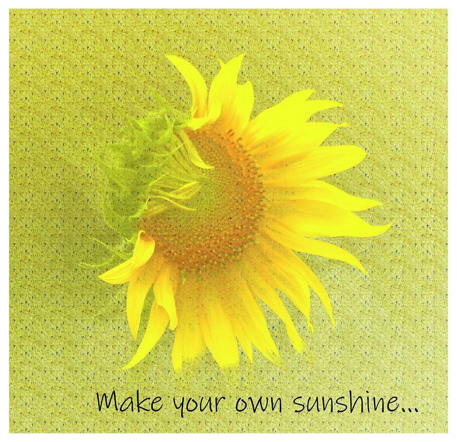 Make Your Own Sunshine by Ola Allen