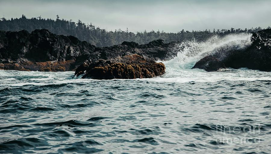 Making Waves on the Pacific by Alanna DPhoto