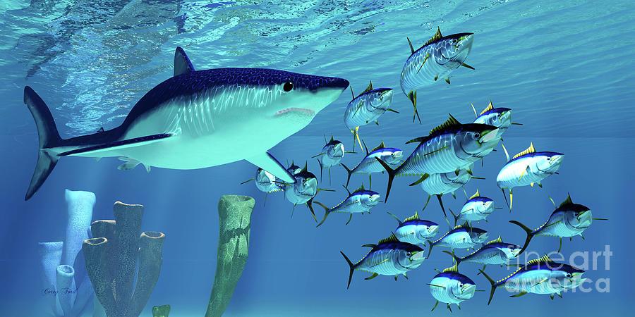 Mako Shark after Yellowfin Tuna by Corey Ford