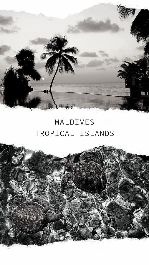 Maldives. Tropical Islands Poster 1 by Jenny Rainbow