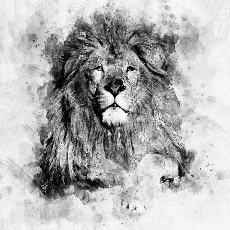 Lion painting male lion black and white watercolor portrait by jesp art and decor