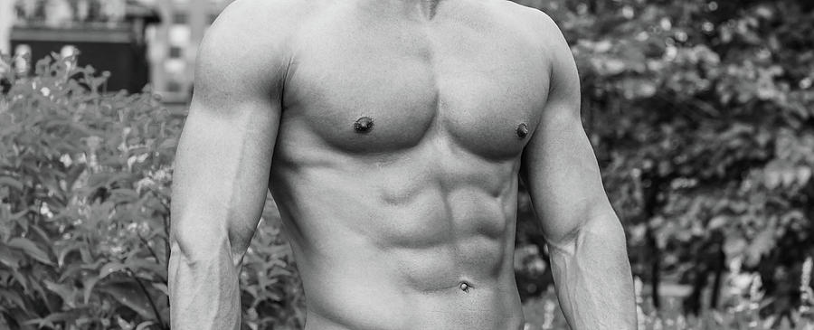 Male Torso 2 by Alexander Image