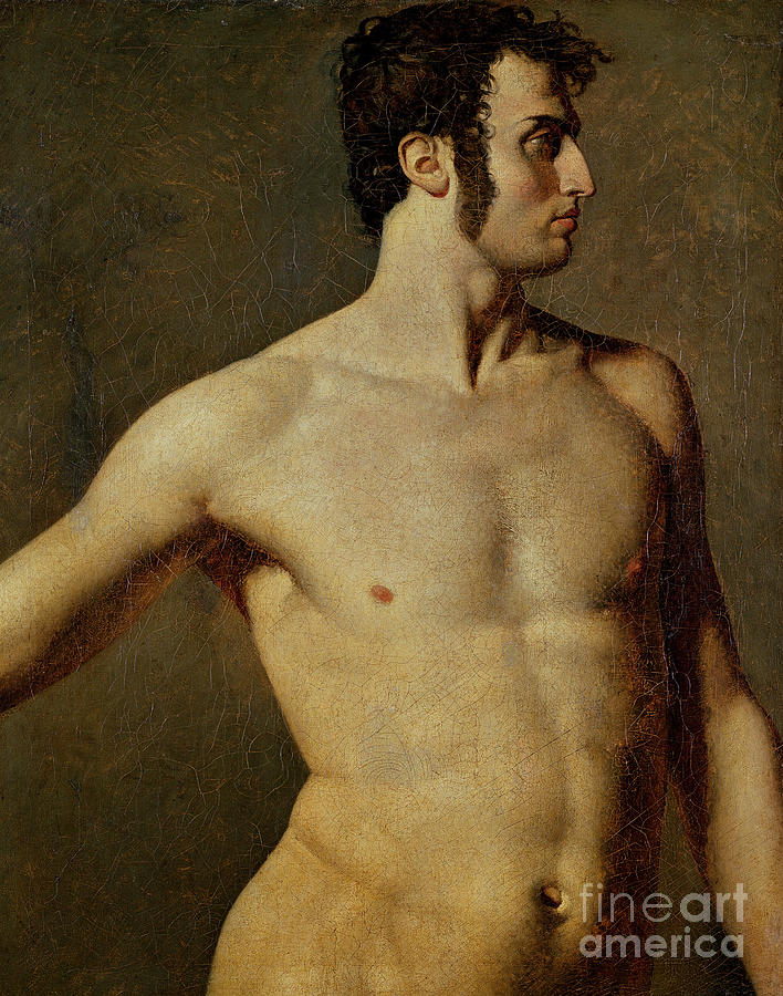 Male Torso. Artist Ingres, Jean Auguste Drawing by Heritage Images