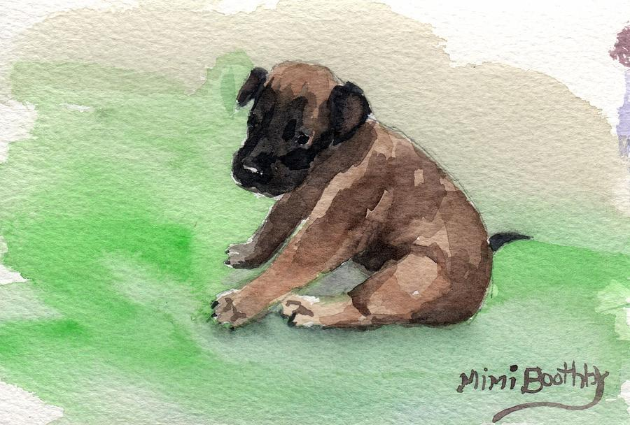 Malinois Pup 3 by Mimi Boothby