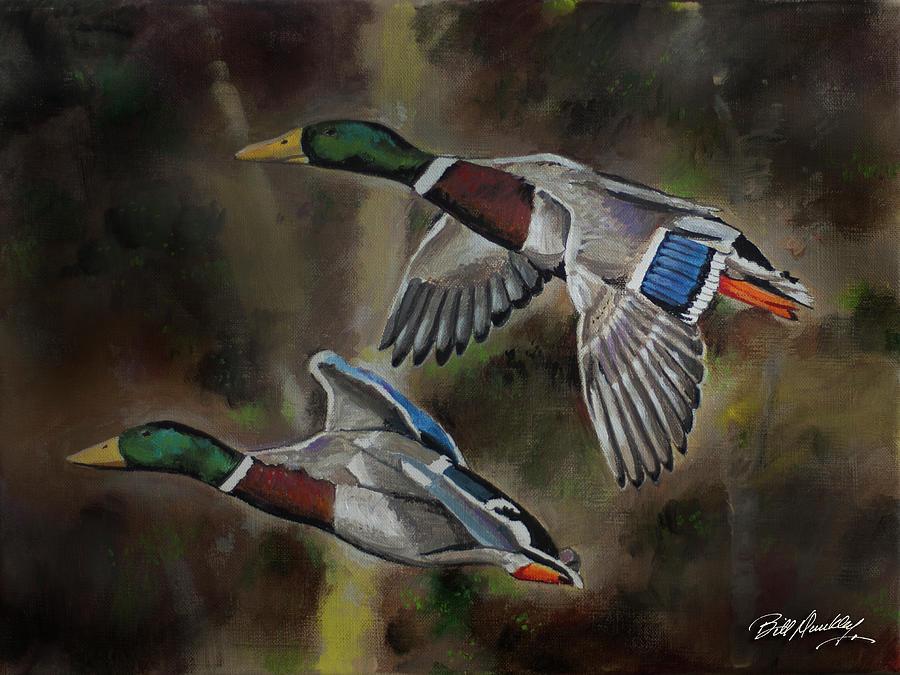 Mallard ducks in flight by Bill Dunkley