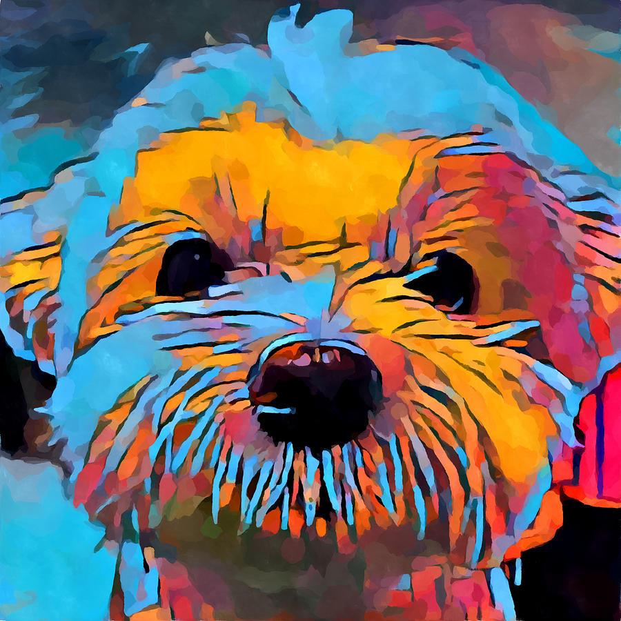 Animal Painting - Maltese 2 by Chris Butler