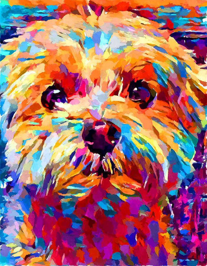 Animal Painting - Maltese 3 by Chris Butler