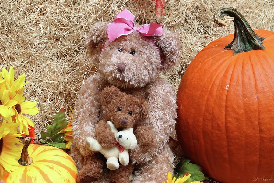 Mama Bear and Baby Bear by Trina Ansel