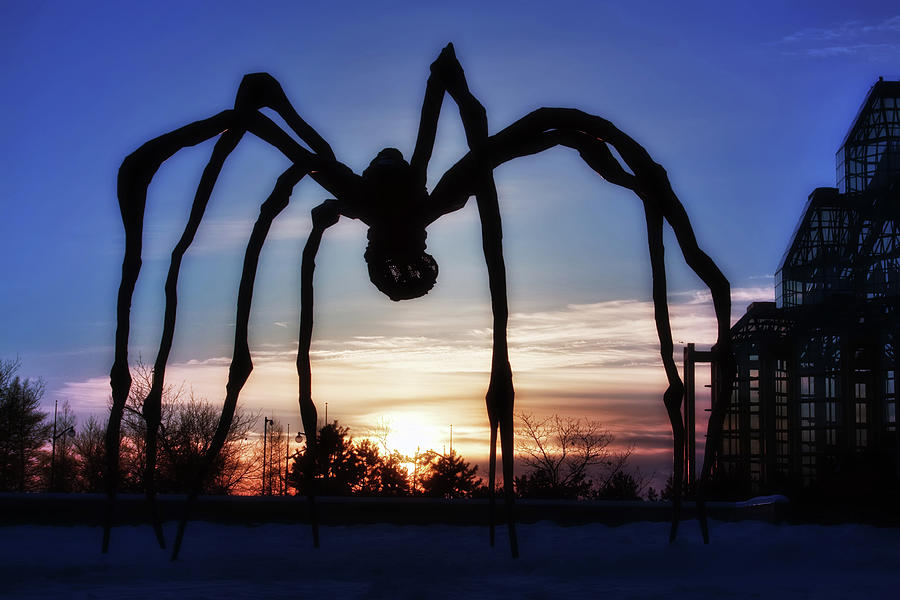 Maman, the Giant Spider by Tatiana Travelways