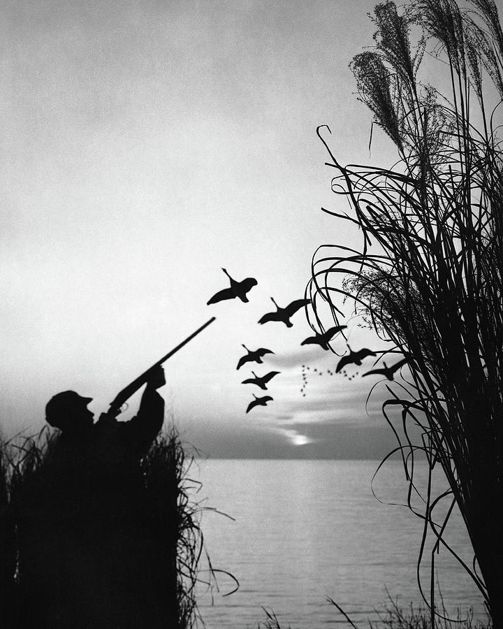 Man Duck-hunting Photograph by Stockbyte