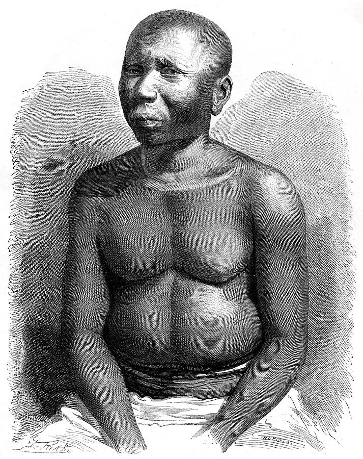 Man From The Andaman Islands, 19th Drawing by Print Collector