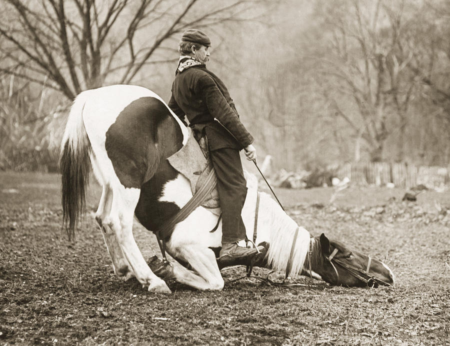 Man Seated On Bowing Horse Photograph by Bettmann