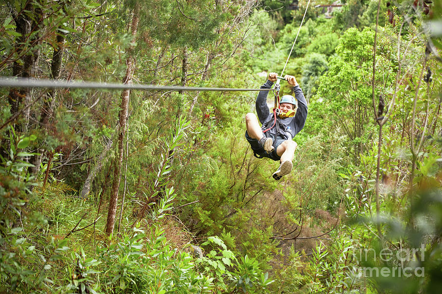 Adrenaline Photograph - Man Zip Lining Above Trees In Woods by Caia Image/science Photo Library
