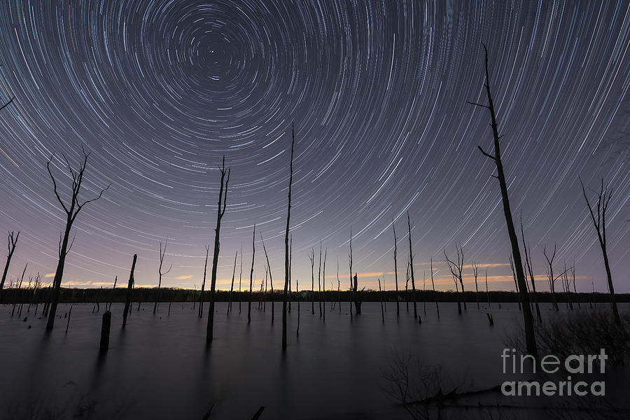 Manasquan Reservoir Star Trails  by Michael Ver Sprill