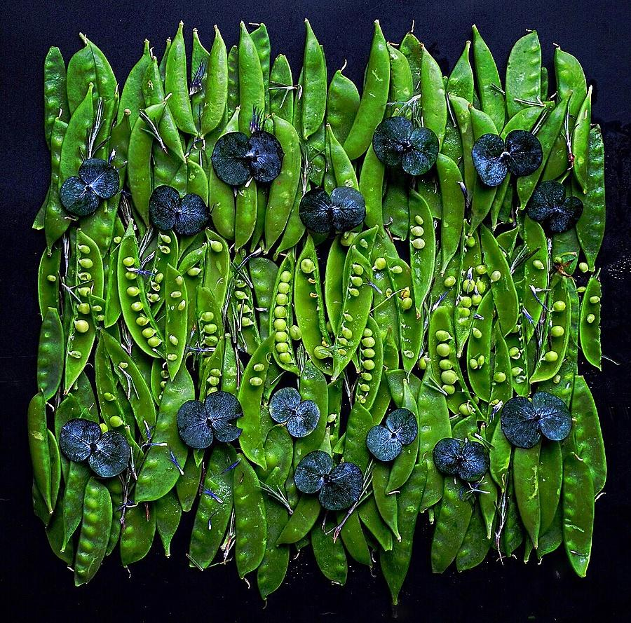Many Peas by Sarah Phillips