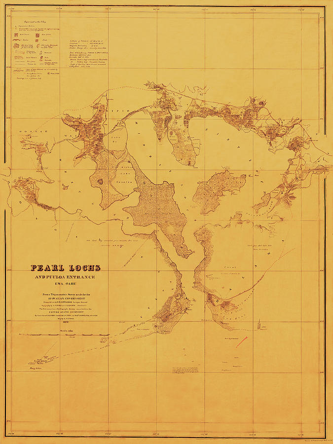 Map Of Pearl Harbor 1873 by Andrew Fare