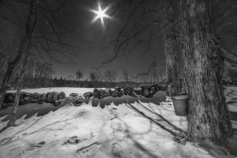 Maple Sugaring Sap Buckets by Joann Vitali