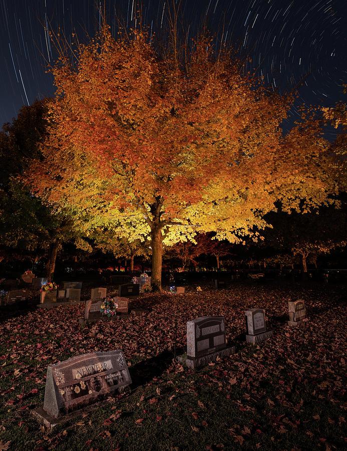 Maplewood Cemetery Orange by Hal Mitzenmacher