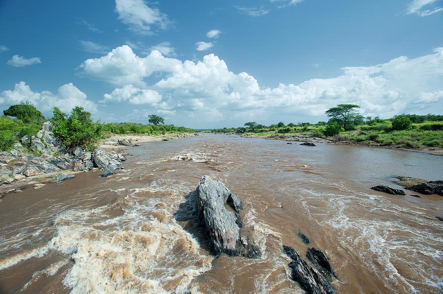 Mara River In The Serengetimasaimara Photograph by Guenterguni