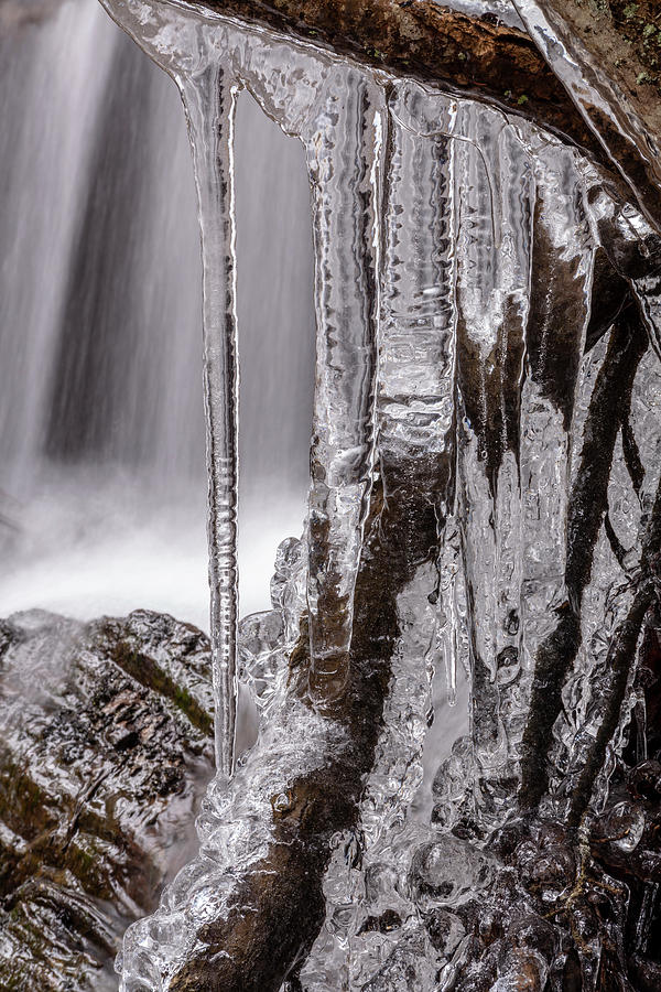 March Icicles by Irwin Barrett