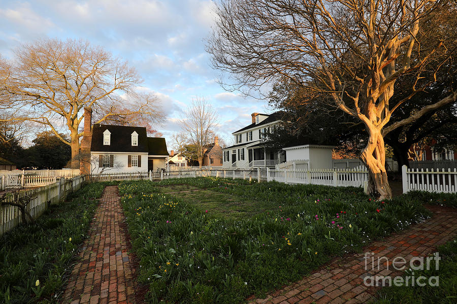 March Morning at the Taliaferro-Cole Garden by Rachel Morrison