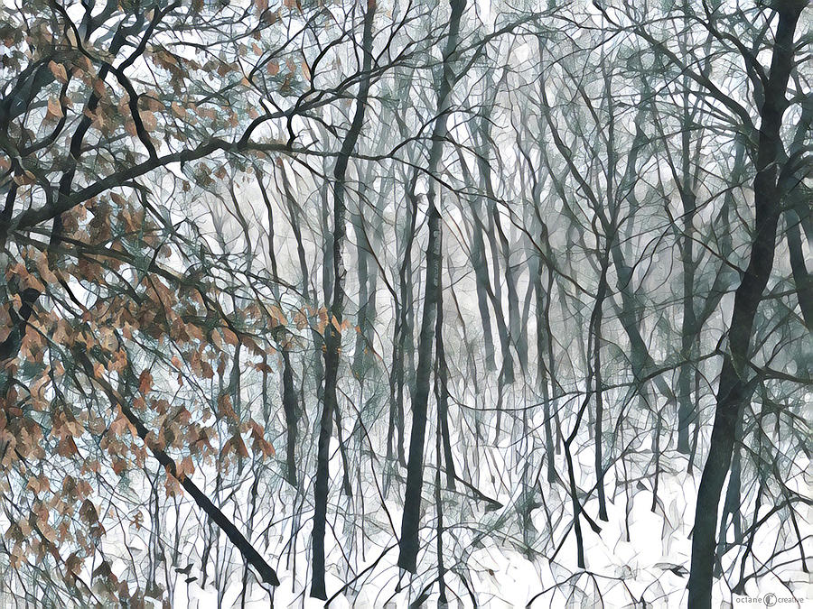 March Woods by Tim Nyberg