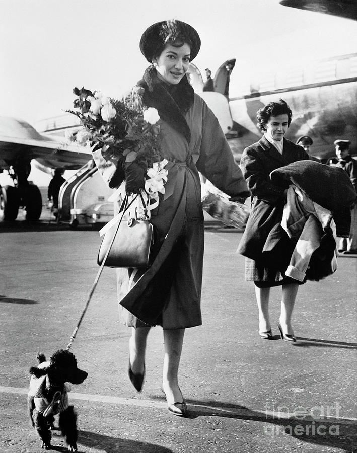 Maria Callas And Dog Arriving At Airport Photograph by Bettmann
