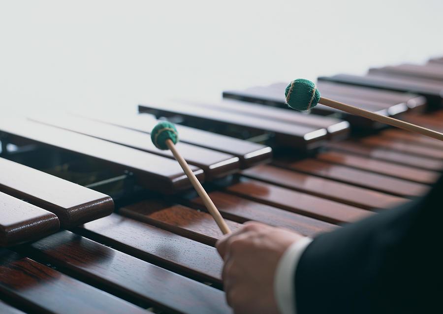 Marimba Performance Photograph by Imagenavi
