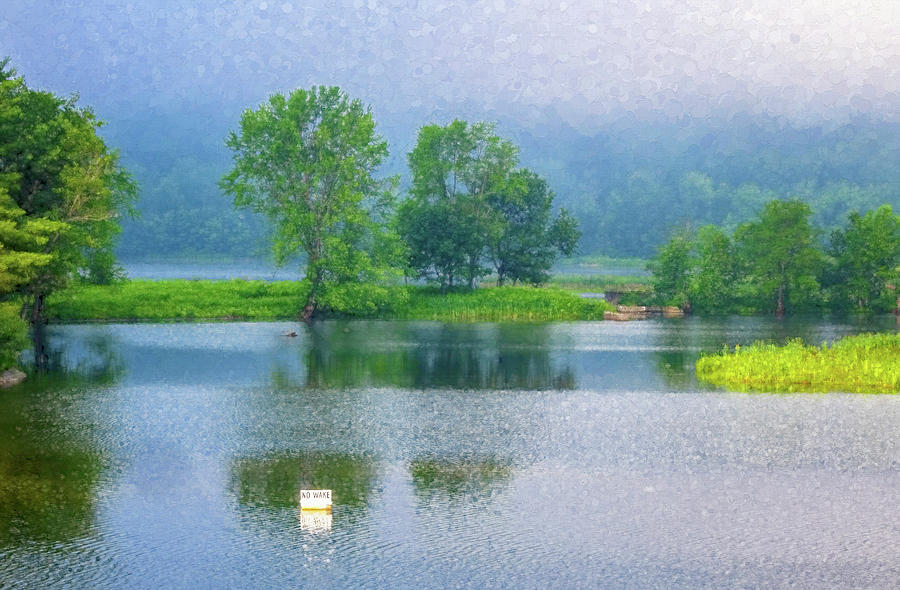 Marina Morning by Tom Singleton