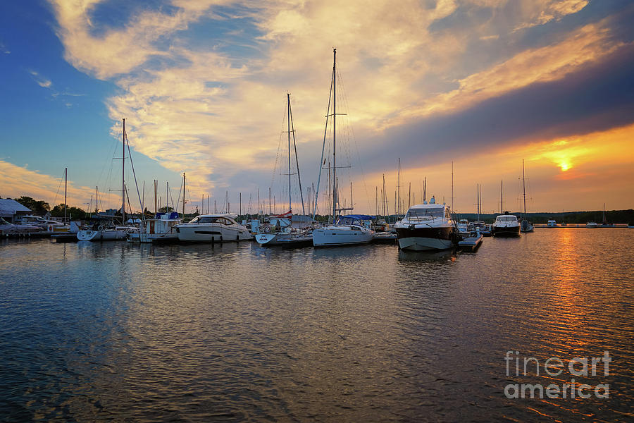 Marina Summer Sunset by Rachel Cohen
