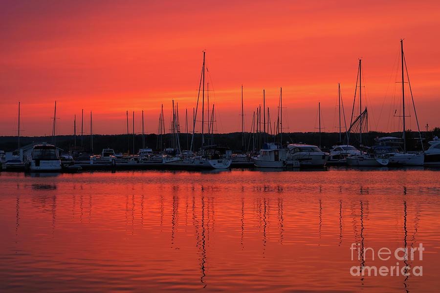 Marina Sunset in Summer by Rachel Cohen