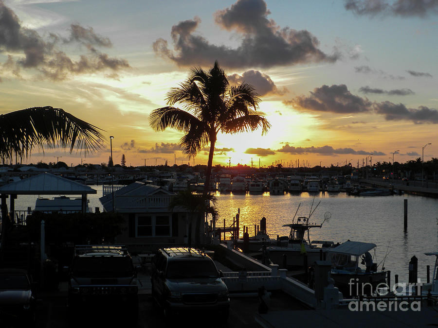 Marina Sunset by Randall Saltys