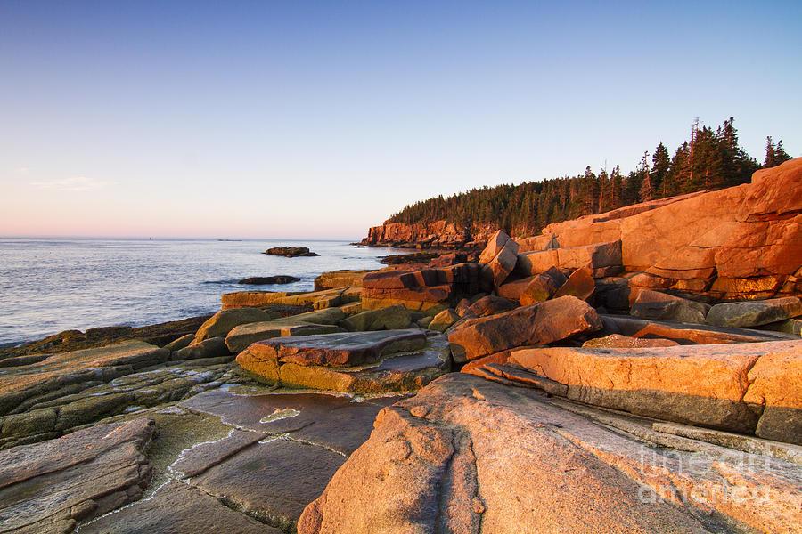 Tide Photograph - Marine Landscape In Acadia Park Loop by Mircea Costina