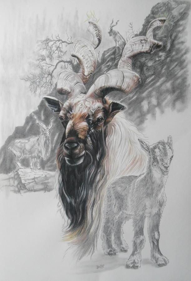 Markhor Goat by Barbara Keith