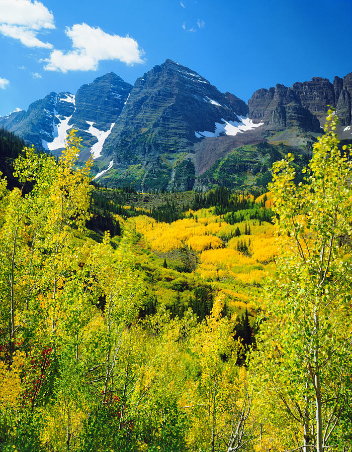 Maroon Bells With Autumn Aspen Trees Photograph by Ron thomas