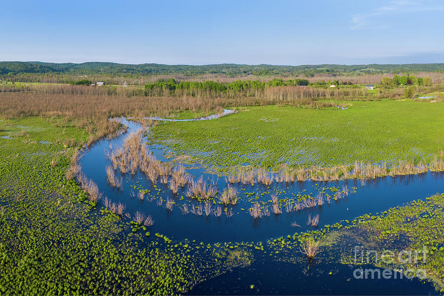 Arcadia Photograph - Marshland In Arcadia by Twenty Two North Photography
