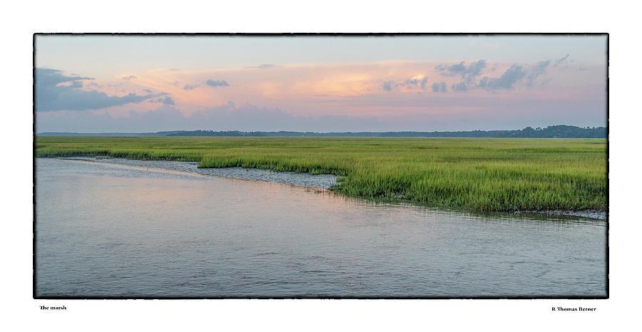 Marshland by R Thomas Berner