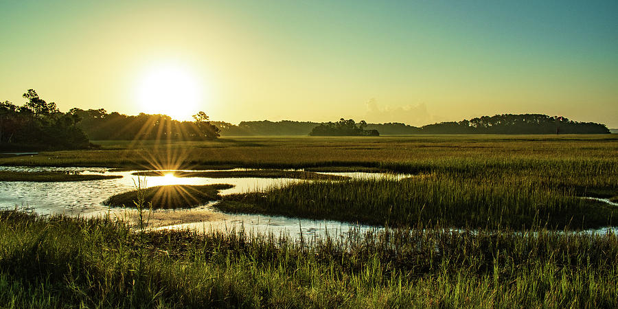 Marshy Sunrise Panorama Photograph