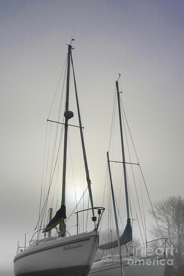 Masts In The Mist Photograph