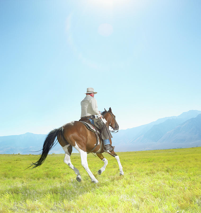 Mature Cowboy Riding Painted Mustang Photograph by Stephen Swintek