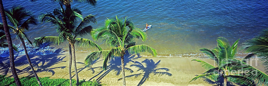 Maui Maalaea  Sugar Beach plam trees beach paddle board  3090300 by Tom Jelen